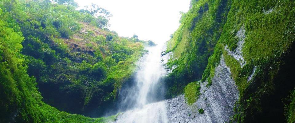 Wisata Air Terjun Madakaripura ( Air Terjun Tertinggi di Jawa )