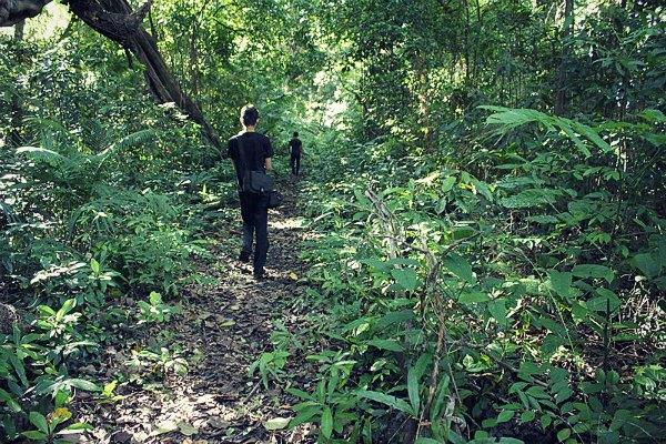Jalur Trekking ke Tanjung Layar