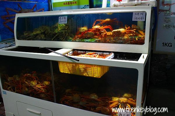 Banyak Rumah Makan Seafood di Sokcho