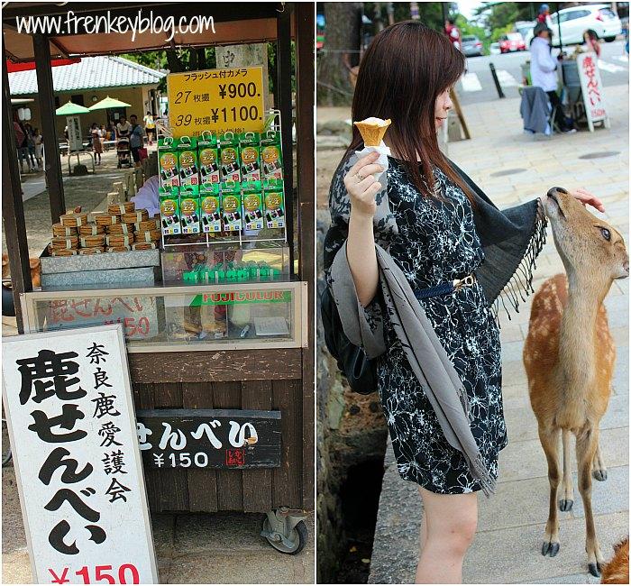 Penjual Makanan Rusa 150 Yen ~ Rusa nya cuma jinak ke cewek doang LOL
