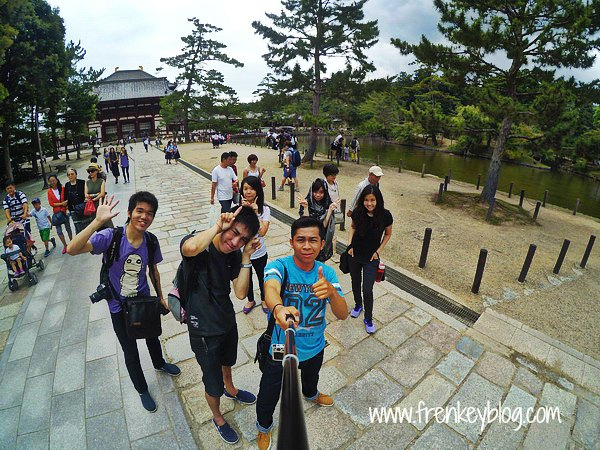 Check In Completed! At Todaiji Temple - Nara