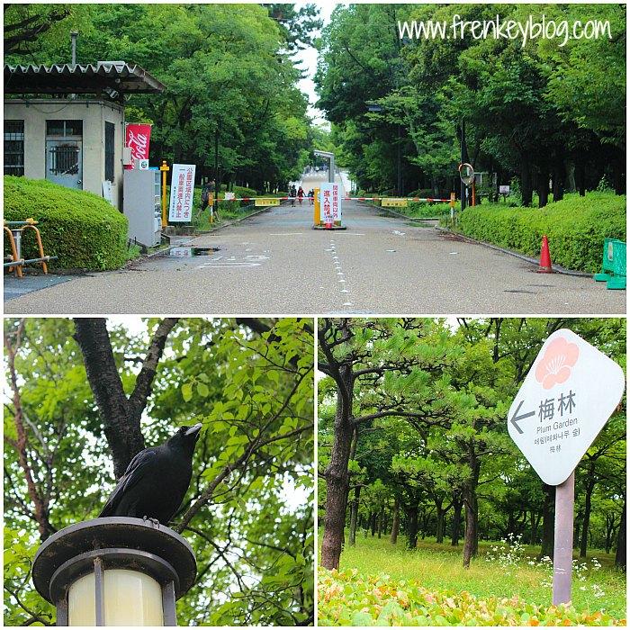 Taman di luar Osaka Castle dan Burung Gagak Hitam