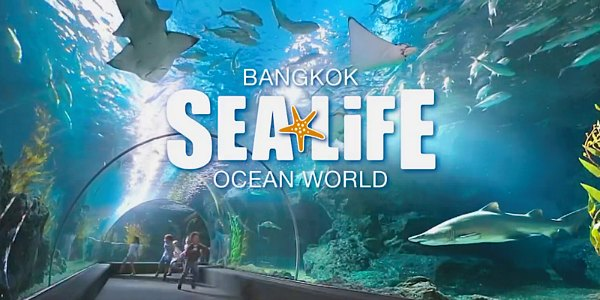 Sea Life Ocean World Bangkok