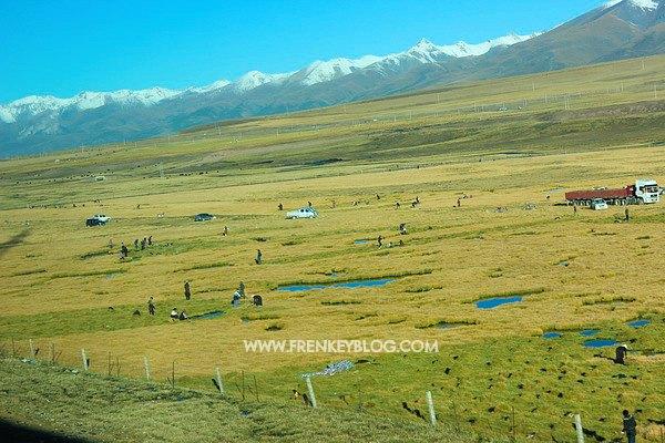 Para Gembala di Tibet