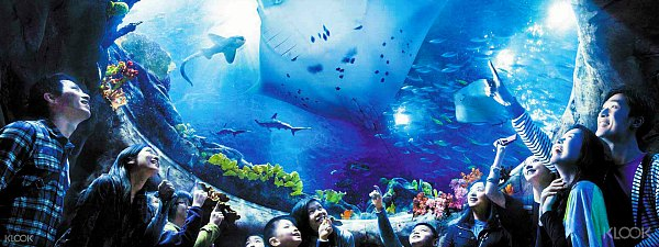 Grand Aquarium - Ocean Park HongKong