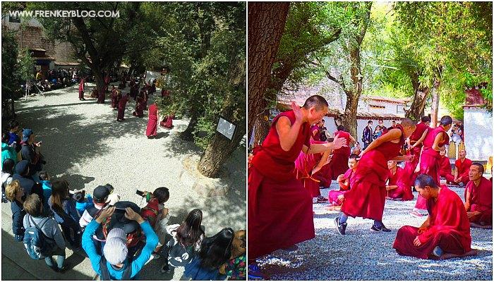 Para Biksu sedang berdebat di Sera Monastery